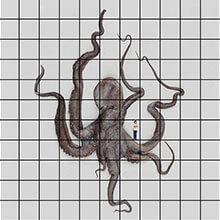 [写真]四千斤もある大章魚漂着