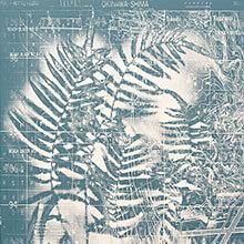 [写真]羊歯植物より Projection map 1945 yontanzan