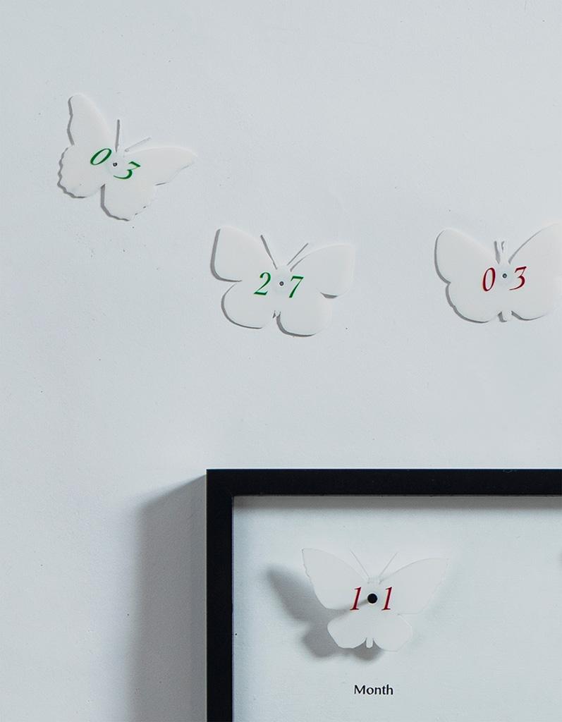 浦崎 翔太『自然から生まれる生活デザイン』